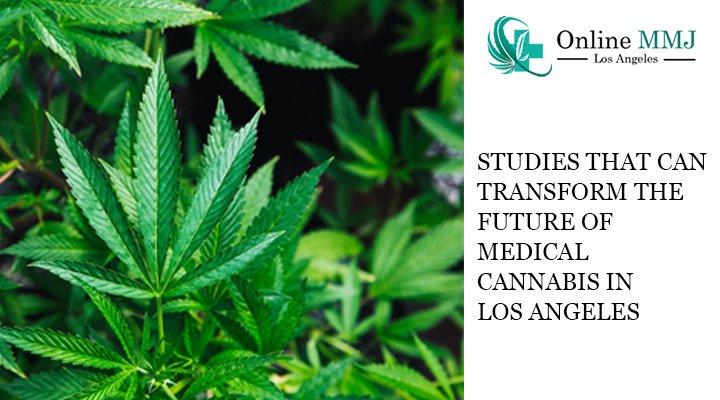 Studies That Can Transform The Future of Medical Cannabis in Los Angeles
