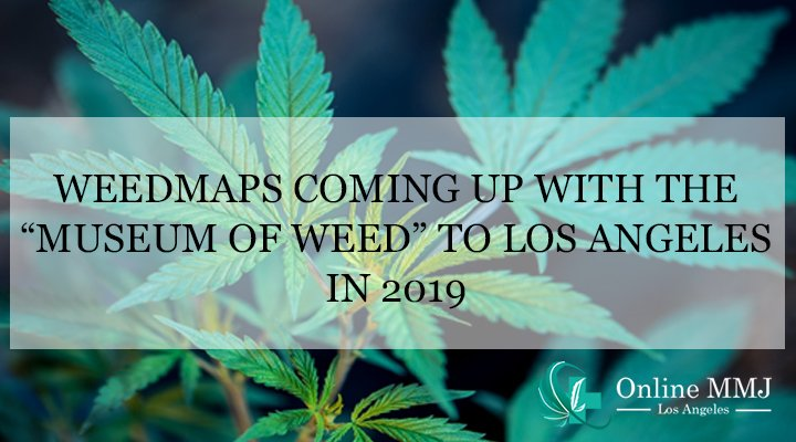 "Weedmaps Coming up with the ""Museum of Weed"" to Los Angeles in 2019"