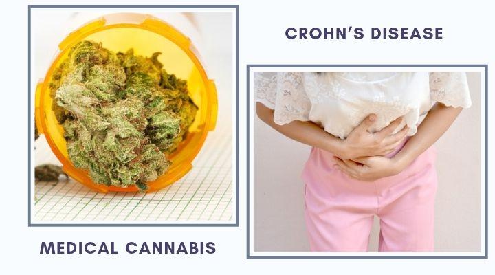 Medical Cannabis And Crohn's Disease