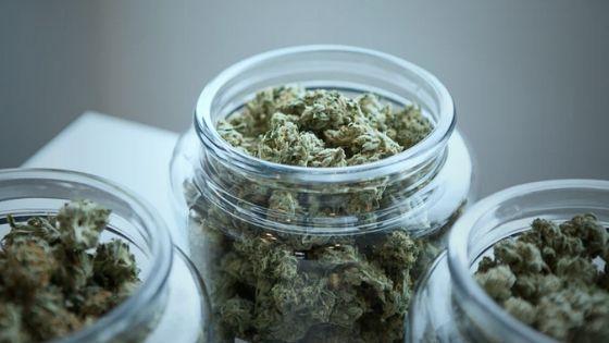 medical marijuana in Los Angeles