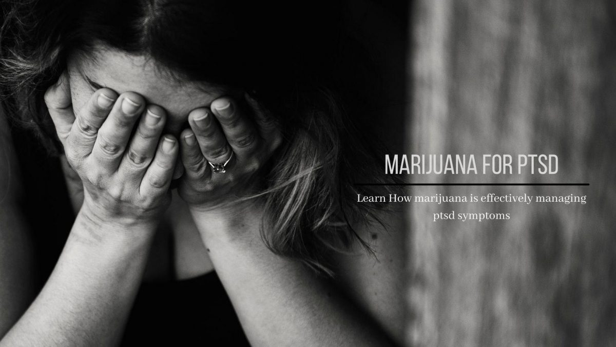 Using Marijuana For PTSD – All You Should Learn