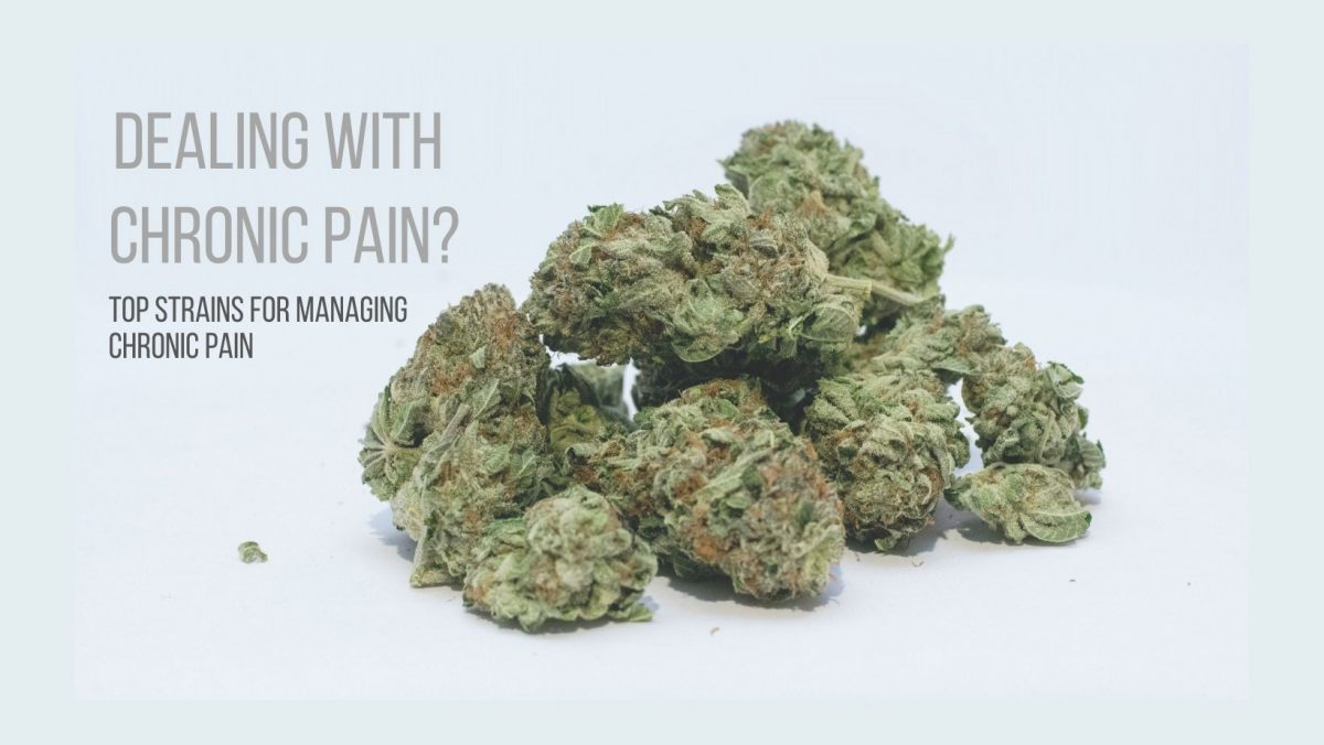 Top medical marijuana strains for managing chronic pain