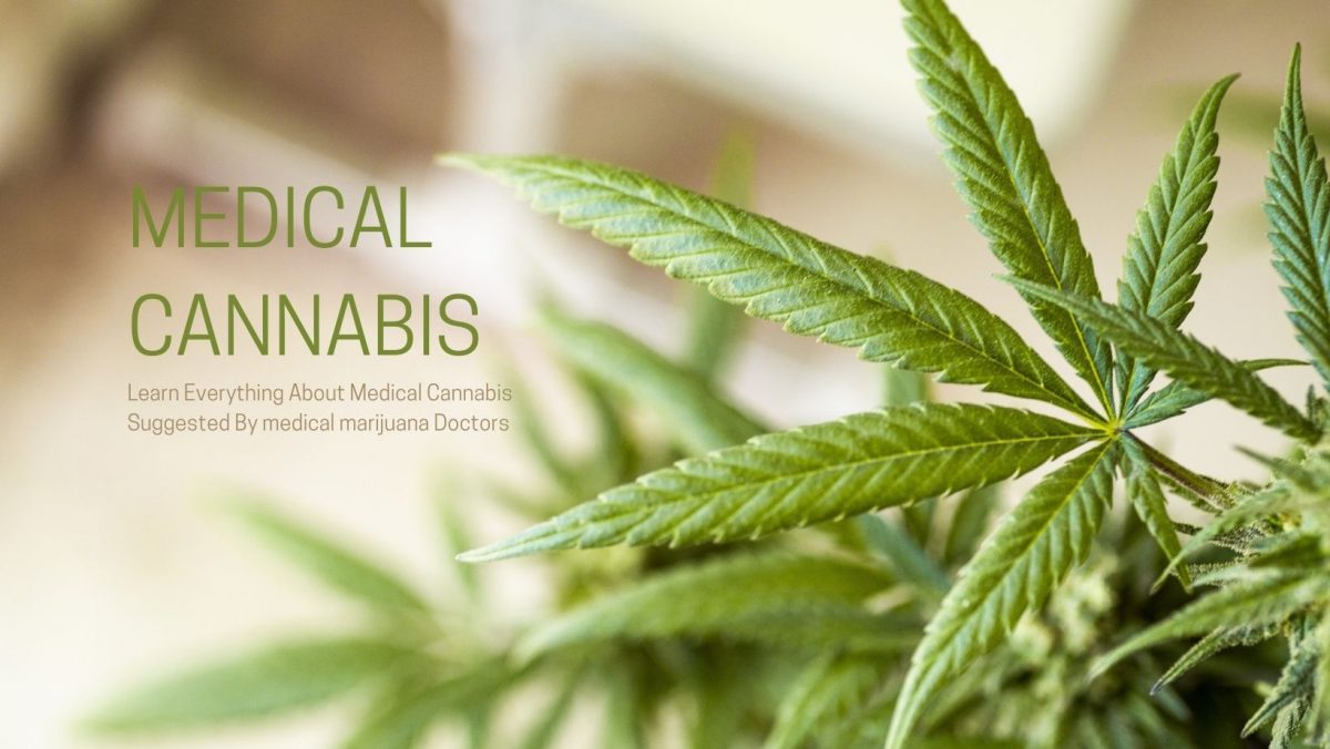 Things Beginners Need to Understand About Cannabis [Explained by Medical Marijuana Doctors]